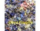 Dried Mix petals